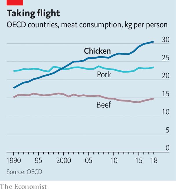 Chiếm 23 trên tổng số 30 tỷ loài vật được nuôi ở 1 vài trang trại, gà đang trở thành ông hoàng ngành chăn nuôi toàn cầu - Ảnh 2.