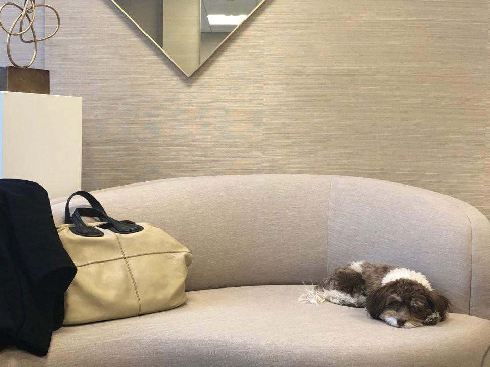 cheryl eisen - 14 15465109757092072682234 - Nữ CEO thiết kế nội thất cho Ivanka Trump và Kim Kardashian: 9h sáng ngủ dậy, 10h đủng đỉnh đi làm, nhưng xử lý công việc thì miễn bàn!