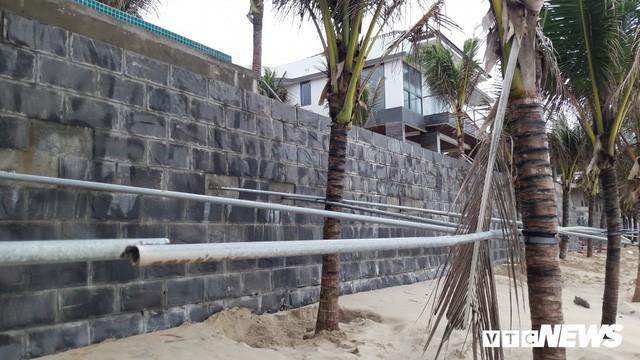 Ảnh: Mang sắt thép quây chằng chịt cả trăm cây dừa ven bãi biển hấp dẫn nhất hành tinh - Ảnh 4.