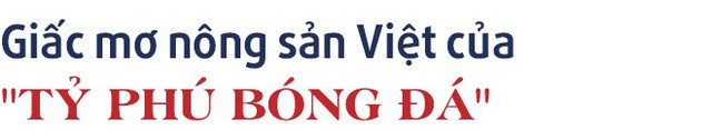 """Chuyện kinh doanh lần đầu kể của """"tỷ phú"""", tiền đạo Anh Đức: Từ kinh doanh đồ thể thao đến giấc mơ thương hiệu nông sản Việt - Ảnh 8."""