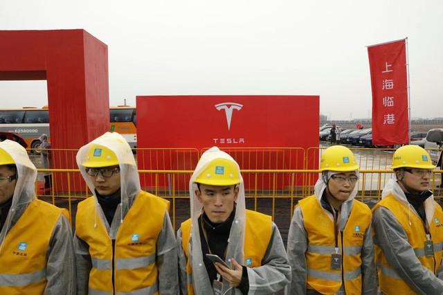 Elon Musk nhìn thấy tương lai của Tesla trong 1 bãi sình lầy ở Trung Quốc - Ảnh 2.