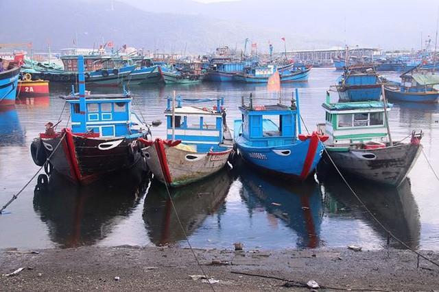 Ngổn ngang nghĩa địa tàu cá xả bản ở Đà Nẵng - Ảnh 11.