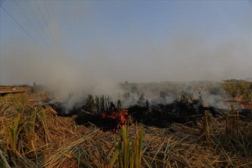 Khói đốt rơm rạ đang bủa vây ngoại thành Hà Nội - Ảnh 3.