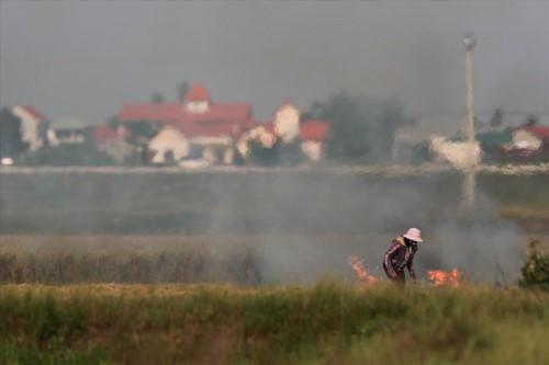 Khói đốt rơm rạ đang bủa vây ngoại thành Hà Nội - Ảnh 7.