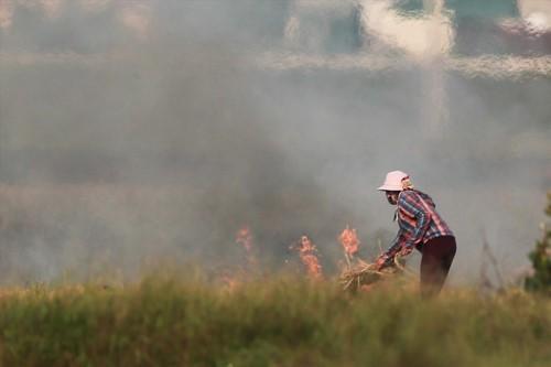 Khói đốt rơm rạ đang bủa vây ngoại thành Hà Nội - Ảnh 8.