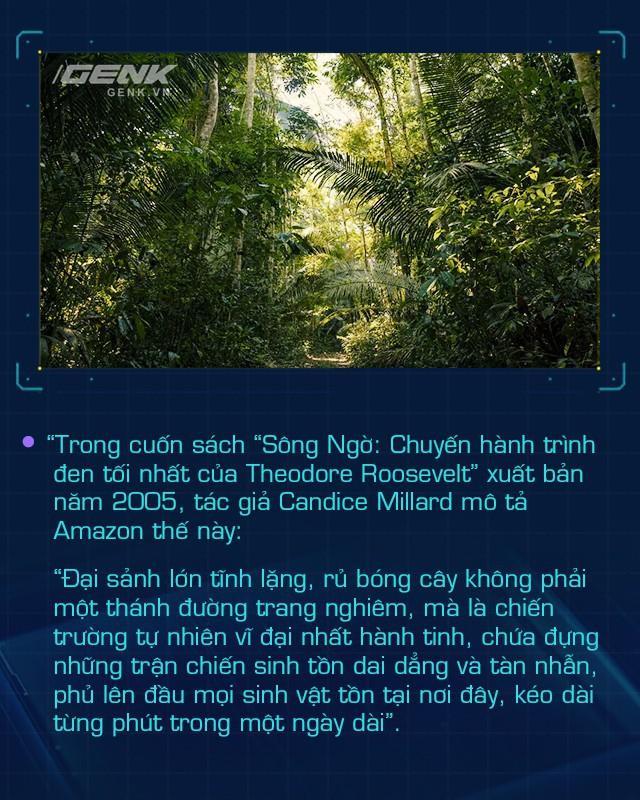 Ở Amazon, nhóm người bản địa giỏi công nghệ nhất thế giới đang cứu lấy từng tấc rừng, bảo vệ lá phổi xanh cho toàn nhân loại - Ảnh 17.