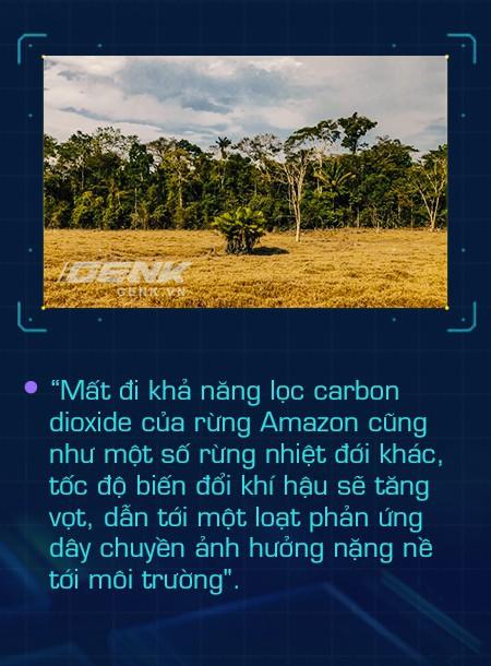 Ở Amazon, nhóm người bản địa giỏi công nghệ nhất thế giới đang cứu lấy từng tấc rừng, bảo vệ lá phổi xanh cho toàn nhân loại - Ảnh 4.