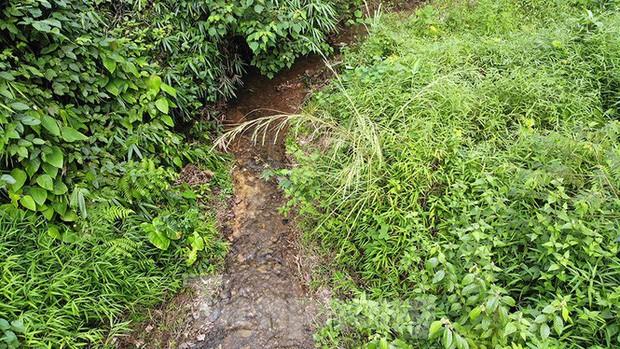 Toàn cảnh nhà máy nước sông Đà, nơi nguồn nước sạch cho Thủ đô đang bị đe dọa - Ảnh 5.