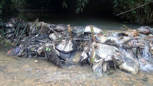 Toàn cảnh nhà máy nước sông Đà, nơi nguồn nước sạch cho Thủ đô đang bị đe dọa - Ảnh 6.