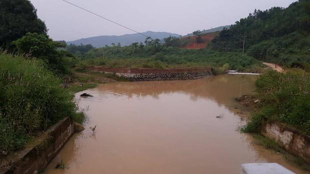 Trâu đằm suối, bò, dê uống nước kênh dẫn vào nhà máy nước sạch sông Đà - Ảnh 3.