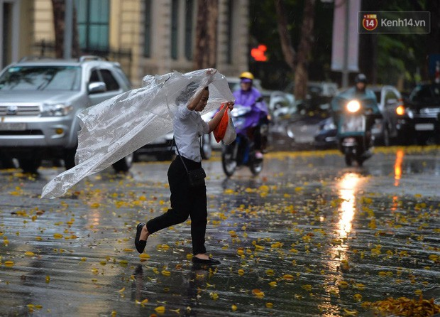 Chùm ảnh: Hà Nội đón cơn mưa rào sau nhiều ngày hanh khô, chỉ số chất lượng không khí được cải thiện - Ảnh 5.