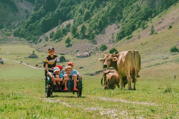 zurich - photo 20 157015354380789393976 - Giữa lúc khắp nơi ô nhiễm như thế này, mời bạn xem ngay bộ ảnh du lịch xanh mướt ở Thụy Sĩ để xoa dịu tâm hồn nhé!