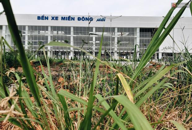 Bến xe Miền Đông mới trị giá 4.000 tỉ đồng đã hoàn thành nhưng vẫn án binh bất động, cỏ dại phủ kín xung quanh - Ảnh 2.