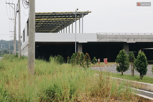 Bến xe Miền Đông mới trị giá 4.000 tỉ đồng đã hoàn thành nhưng vẫn án binh bất động, cỏ dại phủ kín xung quanh - Ảnh 13.