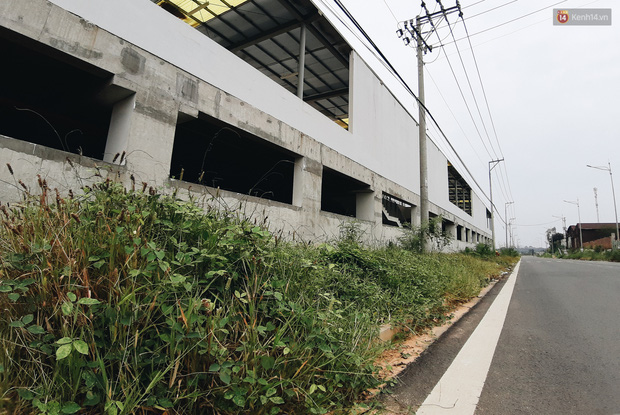 Bến xe Miền Đông mới trị giá 4.000 tỉ đồng đã hoàn thành nhưng vẫn án binh bất động, cỏ dại phủ kín xung quanh - Ảnh 19.