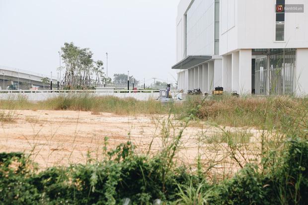 Bến xe Miền Đông mới trị giá 4.000 tỉ đồng đã hoàn thành nhưng vẫn án binh bất động, cỏ dại phủ kín xung quanh - Ảnh 8.