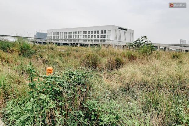 Bến xe Miền Đông mới trị giá 4.000 tỉ đồng đã hoàn thành nhưng vẫn án binh bất động, cỏ dại phủ kín xung quanh - Ảnh 10.