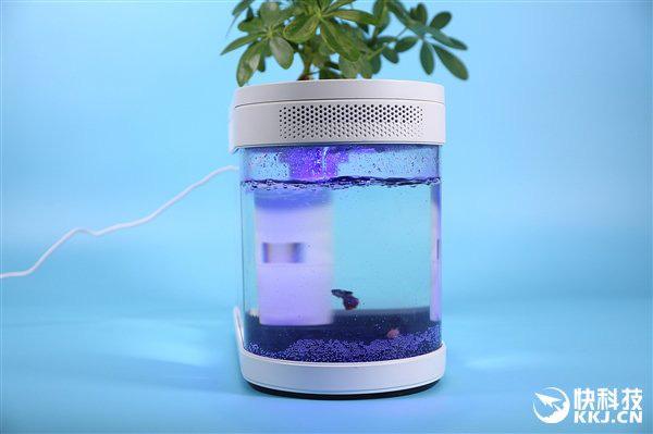 Xiaomi ra mắt bể cá di động chạy điện và không cần thay nước thường xuyên, giá chỉ khoảng 1 triệu đồng - Ảnh 1.