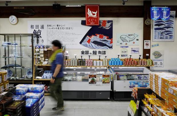 Đăng video ăn thịt cá voi xanh mua ở Nhật khiến dân mạng tranh cãi nảy lửa, Quỳnh Trần JP lên tiếng đáp trả cực gắt - Ảnh 13.