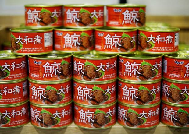 Đăng video ăn thịt cá voi xanh mua ở Nhật khiến dân mạng tranh cãi nảy lửa, Quỳnh Trần JP lên tiếng đáp trả cực gắt - Ảnh 14.