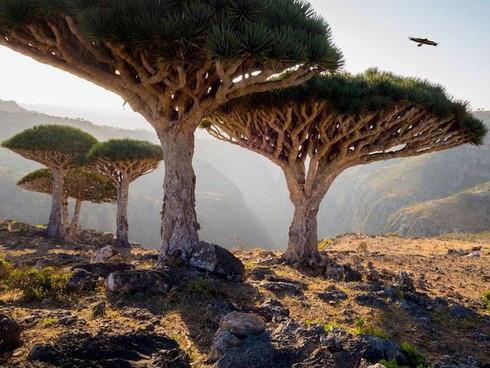 15 di sản Unesco đẹp nhất thế giới - Ảnh 4.