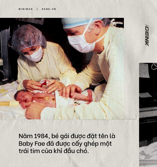 Đọc cuối tuần: Nội tạng từ những con lợn không tên sẽ cứu sống hàng ngàn bệnh nhân tuyệt vọng - Ảnh 5.