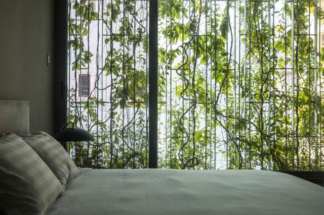Nhà trong hẻm ở Sài Gòn tuyệt đẹp, ngập tràn ánh sáng - Ảnh 5.