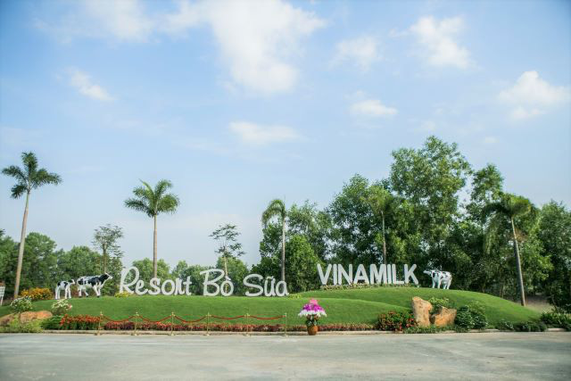 Công ty sữa bò lớn nhất Mỹ nộp đơn phá sản và bài toán tăng trưởng của Vinamilk - Ảnh 4.