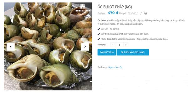 Ốc Bulot Pháp: Từng chả ai ăn, dùng làm mồi cho cá đến chỗ trở thành thực phẩm đắt cả nửa triệu bạc vẫn hết hàng - Ảnh 7.
