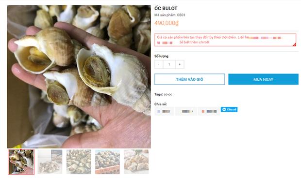 Ốc Bulot Pháp: Từng chả ai ăn, dùng làm mồi cho cá đến chỗ trở thành thực phẩm đắt cả nửa triệu bạc vẫn hết hàng - Ảnh 8.