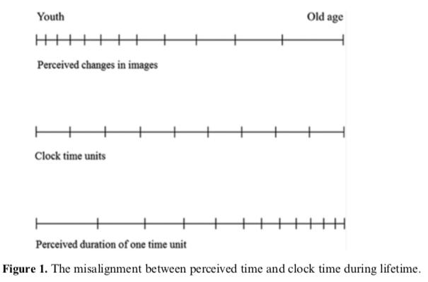 Tại sao càng trưởng thành, chúng ta càng thấy thời gian trôi nhanh hơn? - Ảnh 4.