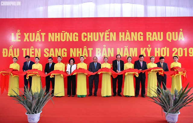 Xông đất ngành nông nghiệp, Thủ tướng kỳ vọng vào đòn bẩy chiến lược của Việt Nam - Ảnh 2.