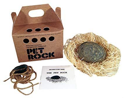 Phụ huynh đau đầu việc nuôi thú cưng của con trẻ? Đã có thú cưng đá Pet Rock, không cần đồ ăn, khỏi lo dọn phân: Case study phân phối hàng kinh điển nhất của thế kỷ 20 - Ảnh 5.