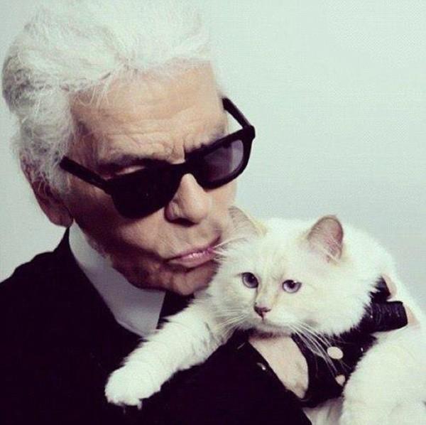 Cuộc sống vương giả của mèo Choupette - tình yêu lớn nhất đời Karl Lagerfeld - Ảnh 2.