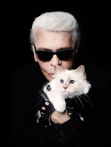 Cuộc sống vương giả của mèo Choupette - tình yêu lớn nhất đời Karl Lagerfeld - Ảnh 12.