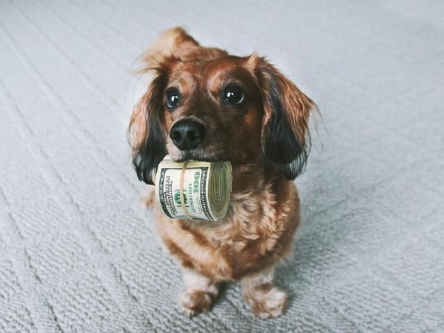 """tiền nhiều để làm gì - photo 1 155089768477169745452 - """"Tiền nhiều để làm gì"""" chưa rõ, nhưng đây là những hệ quả có thể xảy ra"""