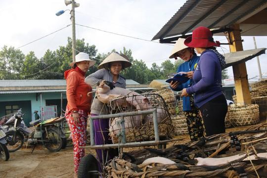 Nghề độc ở chợ heo lớn nhất Quảng Nam - Ảnh 14.