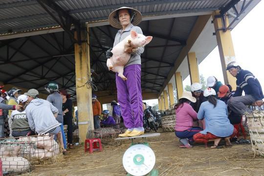 Nghề độc ở chợ heo lớn nhất Quảng Nam - Ảnh 15.