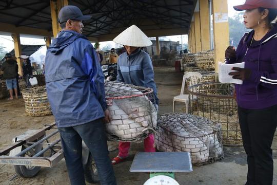 Nghề độc ở chợ heo lớn nhất Quảng Nam - Ảnh 25.