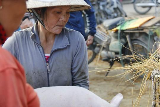 Nghề độc ở chợ heo lớn nhất Quảng Nam - Ảnh 11.