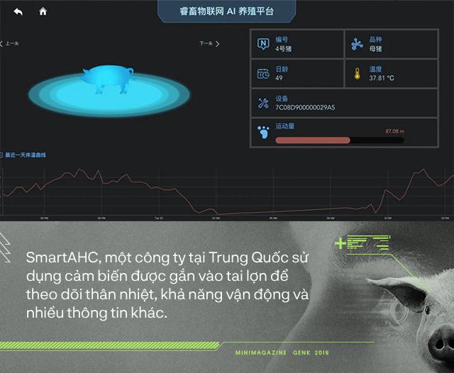 Trung Quốc chống lại dịch tả lợn châu Phi bằng công nghệ nhận diện mặt lợn như thế nào? - Ảnh 3.