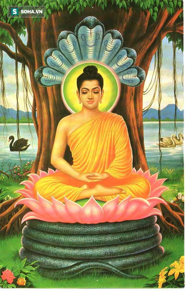 Câu chuyện cuộc đời Đức Phật và lời răn cuối cùng của Ngài trước khi đi vào cõi Niết bàn  - Ảnh 3.