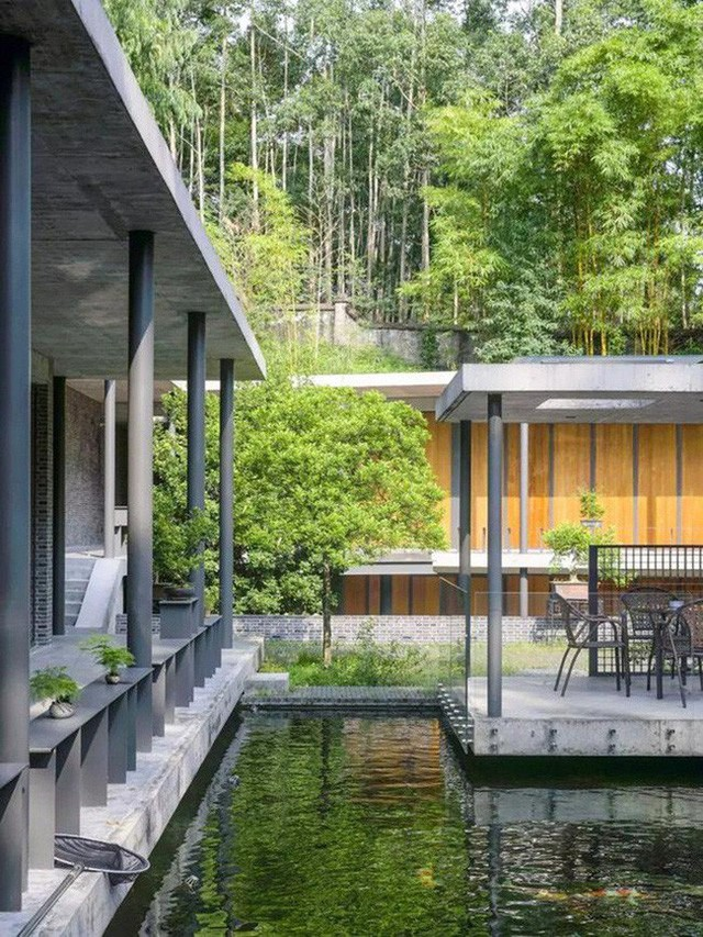 Cuộc sống an yên của người đàn ông độc thân trong ngôi nhà ngoại ô rộng 1000m² với thú vui uống trà, nuôi cá  - Ảnh 29.