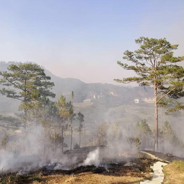 Homestay nổi tiếng nhất nhì ở Đà Lạt bị cháy lớn, nhiều du khách hoảng loạn - Ảnh 4.
