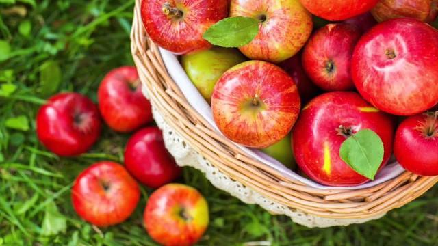Cơ thể chất chứa quá nhiều độc tố: ăn ngay 7 loại trái cây này để thải bỏ độc tố ra ngoài - Ảnh 1.