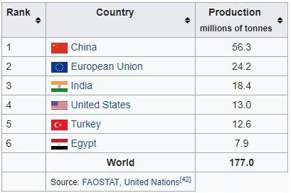 Người Trung Quốc đang nuôi gần 1,4 tỷ dân của mình như thế nào? (Phần 2) - Ảnh 12.