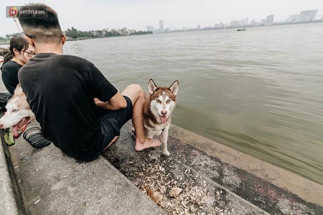 Hà Nội oi nóng ngộp thở, nhiều người mang theo cả thú cưng ra Hồ Tây tắm bất chấp biển cấm - Ảnh 17.