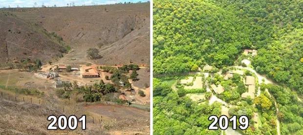 Vợ chồng nhiếp ảnh gia Brazil trồng 2 triệu cây xanh trong suốt 20 năm để hồi sinh khu rừng bị tàn phá, hàng trăm loài động vật lũ lượt kéo về sinh sống - Ảnh 9.