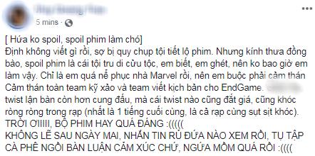 Khán giả Việt xúc động sững sờ, phấn khích tột độ sau suất chiếu ENDGAME đầu tiên - Ảnh 11.