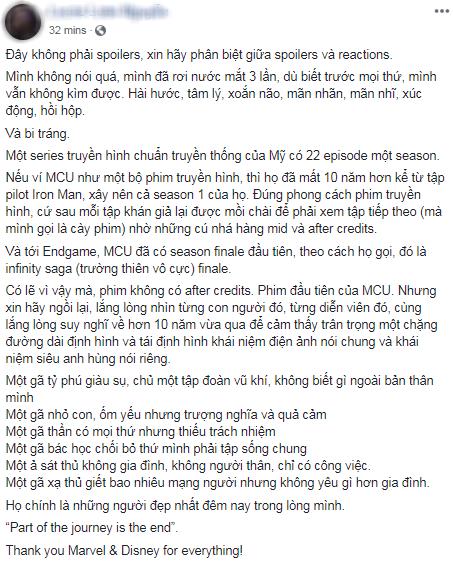 Khán giả Việt xúc động sững sờ, phấn khích tột độ sau suất chiếu ENDGAME đầu tiên - Ảnh 13.